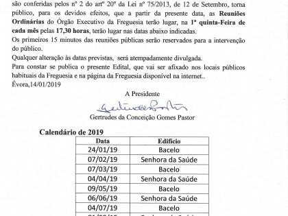 Reuniões ordinárias do orgão executivo 2019