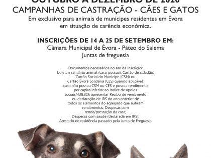 Campanha de Castração – Cães e Gatos 2020